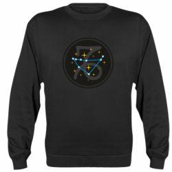 Реглан (свитшот) Capricorn constellation