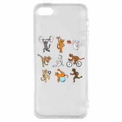 Чохол для iphone 5/5S/SE Cats in sports