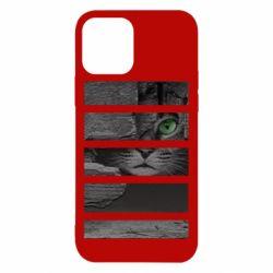 Чехол для iPhone 12/12 Pro All seeing cat