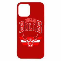 Чохол для iPhone 12/12 Pro Великий логотип Chicago Bulls