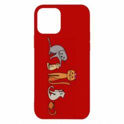 Чехол для iPhone 12/12 Pro Cat family