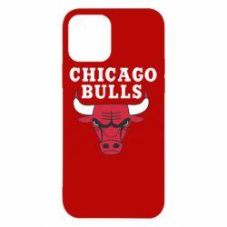 Чехол для iPhone 12/12 Pro Chicago Bulls Classic