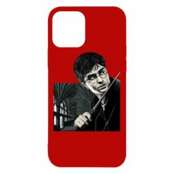 Чехол для iPhone 12/12 Pro Harry Potter