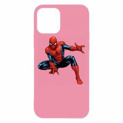 Чехол для iPhone 12/12 Pro Hero Spiderman
