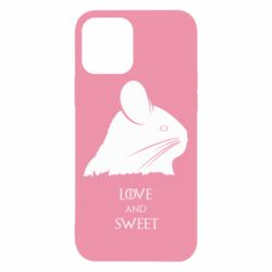 Чохол для iPhone 12/12 Pro Love and sweet game of thrones