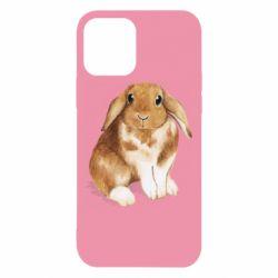 Чохол для iPhone 12/12 Pro Маленький кролик