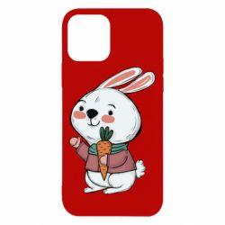 Чохол для iPhone 12/12 Pro Winter bunny