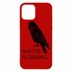 Чохол для iPhone 12/12 Pro Winter is approaching and crow