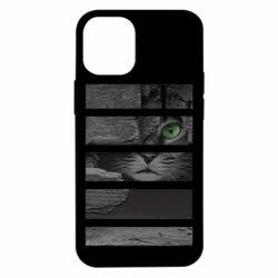 Чехол для iPhone 12 mini All seeing cat