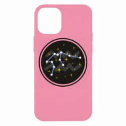 Чехол для iPhone 12 mini Aquarius constellation