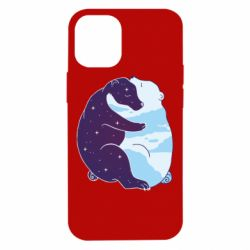 Чохол для iPhone 12 mini Bear day and night