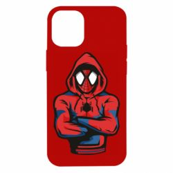 Чохол для iPhone 12 mini Людина павук в толстовці