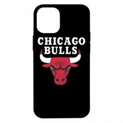 Чехол для iPhone 12 mini Chicago Bulls Classic