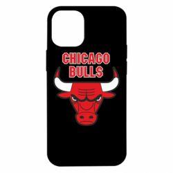 Чохол для iPhone 12 mini Chicago Bulls vol.2