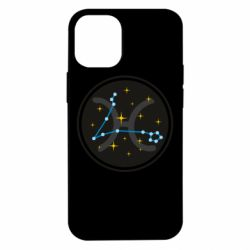 Чехол для iPhone 12 mini Constellation fish