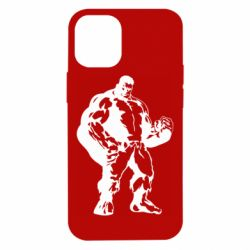 Чехол для iPhone 12 mini Hero Hulk