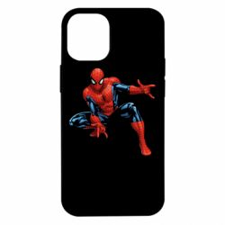 Чехол для iPhone 12 mini Hero Spiderman