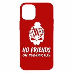 Чехол для iPhone 12 mini No friends on powder day