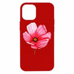Чехол для iPhone 12 mini Poppy flower