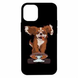Чехол для iPhone 12 mini Собака Кавалер на Скейте