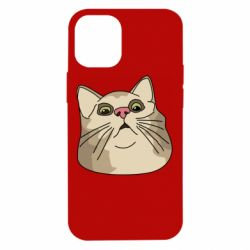 Чехол для iPhone 12 mini Surprised cat