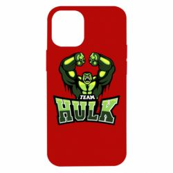 Чехол для iPhone 12 mini Team hulk