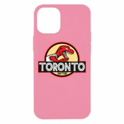 Чехол для iPhone 12 mini Toronto raptors park