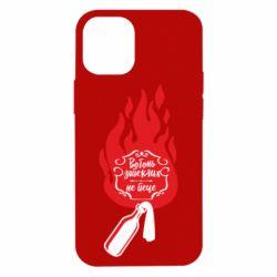 Чехол для iPhone 12 mini Вогонь запеклих не пече