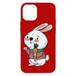 Чохол для iPhone 12 mini Winter bunny