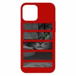 Чехол для iPhone 12 Pro Max All seeing cat