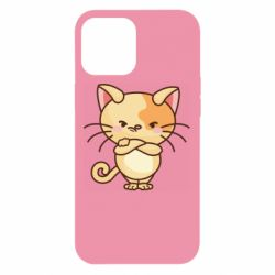 Чехол для iPhone 12 Pro Max Angry red cat