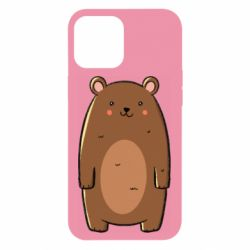 Чехол для iPhone 12 Pro Max Bear with a smile