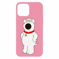 Чехол для iPhone 12 Pro Max Брайан Гриффин
