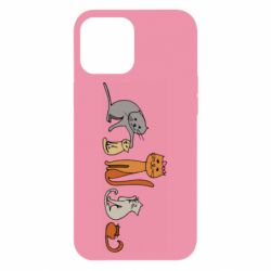 Чехол для iPhone 12 Pro Max Cat family