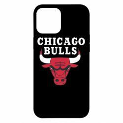 Чехол для iPhone 12 Pro Max Chicago Bulls Classic