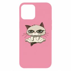 Чохол для iPhone 12 Pro Max Grumpy Cat Art nope