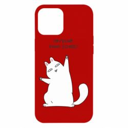 Чехол для iPhone 12 Pro Max I'm feline paw some