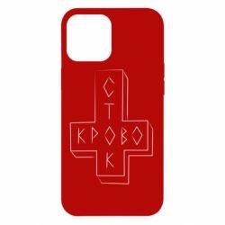 Чехол для iPhone 12 Pro Max Логотип Кровостока