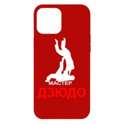 Чехол для iPhone 12 Pro Max Мастер Дзюдо