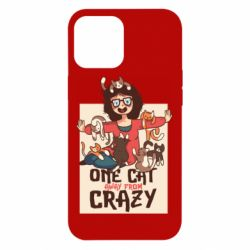 Чехол для iPhone 12 Pro Max One cat away from crazy