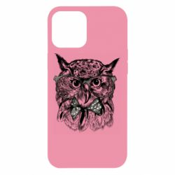 Чохол для iPhone 12 Pro Max Owl hipsters