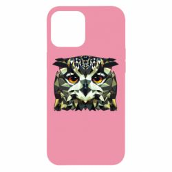 Чехол для iPhone 12 Pro Max Owl Vector