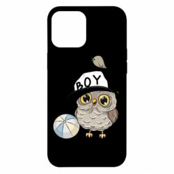 Чехол для iPhone 12 Pro Max Owl with a ball
