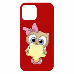 Чехол для iPhone 12 Pro Max Owl with a star
