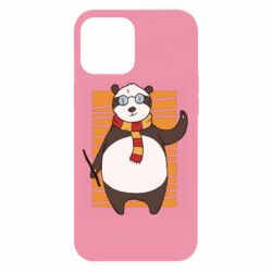 Чехол для iPhone 12 Pro Max Panda Potter