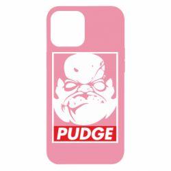 Чехол для iPhone 12 Pro Max Pudge Obey