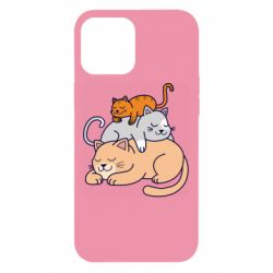 Чехол для iPhone 12 Pro Max Sleeping cats