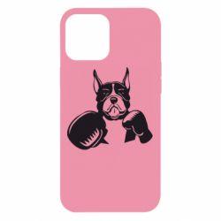 Чохол для iPhone 12 Pro Max Собака в боксерських рукавичках