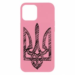 Чехол для iPhone 12 Pro Max Striped coat of arms