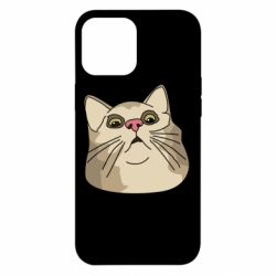 Чехол для iPhone 12 Pro Max Surprised cat